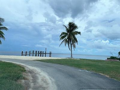 Residential Lots & Land For Sale: 21 72nd Street Ocean