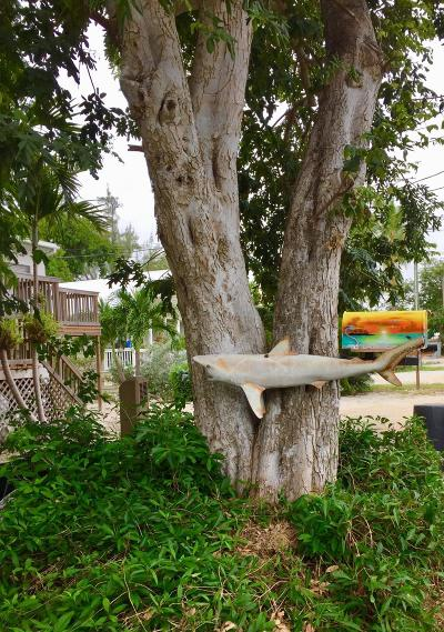 Key Largo Mobile/Manufactured For Sale: 9 Cindy Place