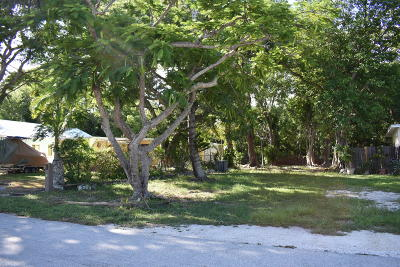 Residential Lots & Land For Sale: 643 Cabrera Street