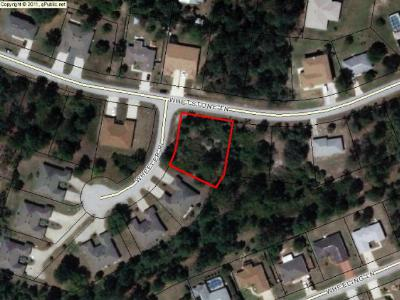 Pine Lakes Residential Lots & Land For Sale: 1 Wheeler Place