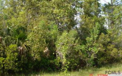 Seminole Woods Residential Lots & Land For Sale: 37 Seaton Valley Path