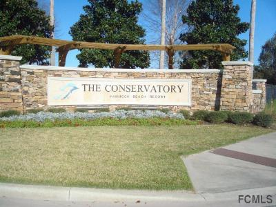 Residential Lots & Land For Sale: 217 Conservatory Drive
