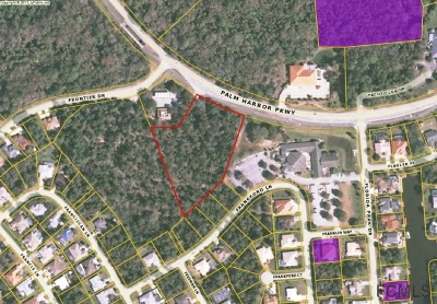 Palm Coast FL Commercial Lots & Land For Sale: $590,000