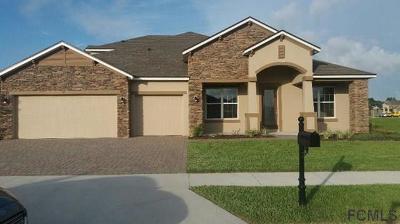 Flagler Beach Single Family Home For Sale: 41 Eagle Lake Dr