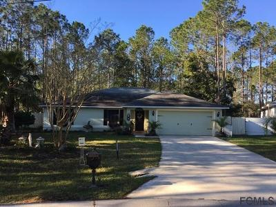 Palm Coast Single Family Home For Sale: 57 Robinson Drive