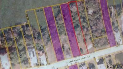 Palm Coast Plantation Residential Lots & Land For Sale: 19 Emerald Lake Court