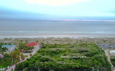 Ponce Inlet Residential Lots & Land For Sale: 4750 S Atlantic Ave
