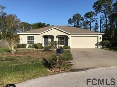 Palm Coast Single Family Home For Sale: 5 Penndale Place