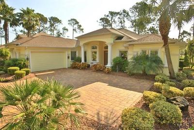 Palm Coast Single Family Home For Sale: 21 Waterview Dr S