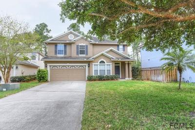 St Augustine Single Family Home For Sale: 1253 Splendid Ravine Street