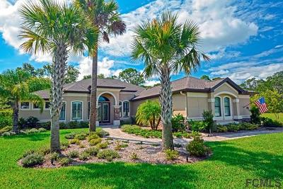 Palm Coast Single Family Home For Sale: 30 Scarlet Oak Circle