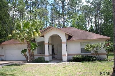 Palm Coast Single Family Home For Sale: 249 Boulder Rock Drive