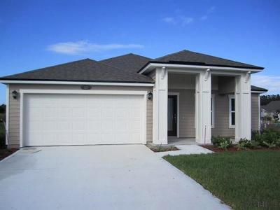 Palm Coast Single Family Home For Sale: 117 N Coopers Hawk Way