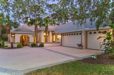 Palm Coast Single Family Home For Sale: 82 Osprey Cir