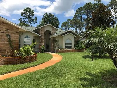 Pine Lakes Single Family Home For Sale: 22 Weber Lane