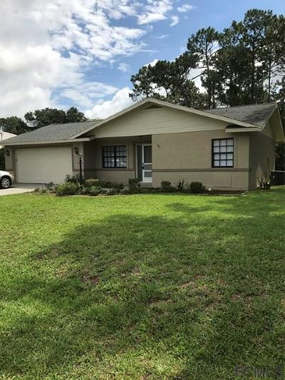 Palm Coast Single Family Home For Sale: 98 Bridgehaven Drive