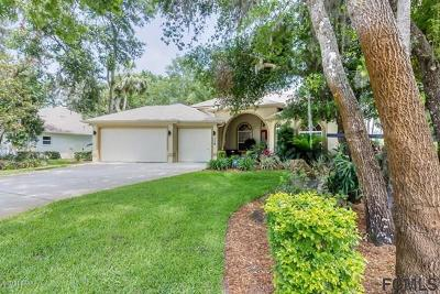 Ormond Beach Single Family Home For Sale: 3783 Carrick Drive