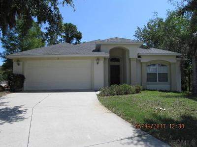 Ormond Beach Single Family Home For Sale: 15 Old Creek Circle