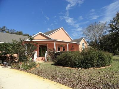 St Augustine Single Family Home For Sale: 156 Moses Creek Blvd