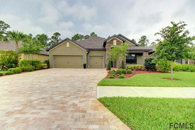 Ormond Beach Single Family Home For Sale: 655 Elk River Drive