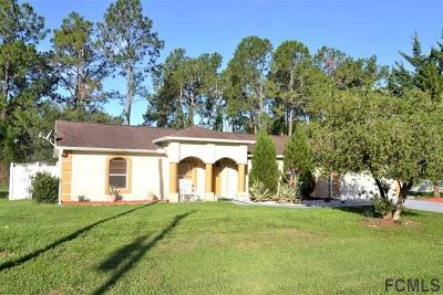 Palm Coast Single Family Home For Sale: 6 Ripcord Lane