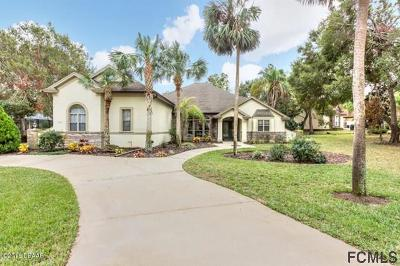 Ormond Beach Single Family Home For Sale: 1206 Kaleen Dr