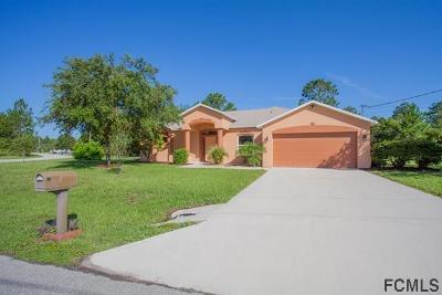 Palm Coast FL Single Family Home For Sale: $284,900