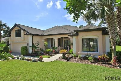 Palm Coast Single Family Home For Sale: 62 Southlake Drive