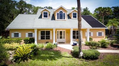 Palm Coast Single Family Home For Sale: 7 Debra Ln