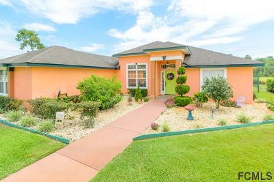 St Augustine Single Family Home For Sale: 124 Caretta Circle