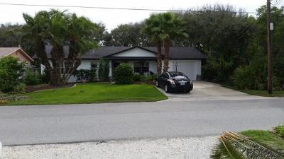 Flagler Beach Single Family Home For Sale: 2254 S Daytona Ave