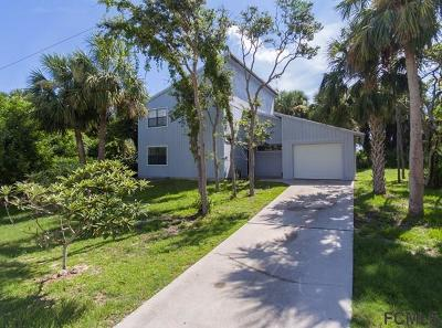 Flagler Beach Single Family Home For Sale: 1300 N Daytona Ave