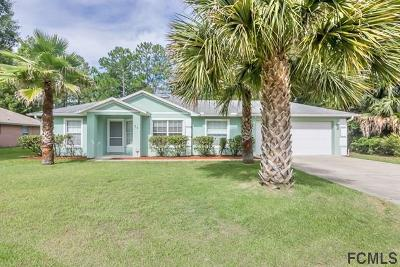 Palm Coast Single Family Home For Sale: 54 Raintree Pl