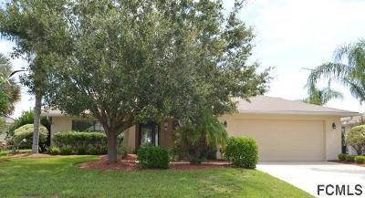 Palm Coast Single Family Home For Sale: 22 Collington Court