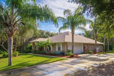 Palm Coast Single Family Home For Sale: 18 Beachside Dr