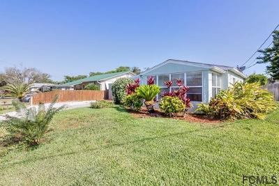 Daytona Beach Single Family Home For Sale: 271 Woodland Ave
