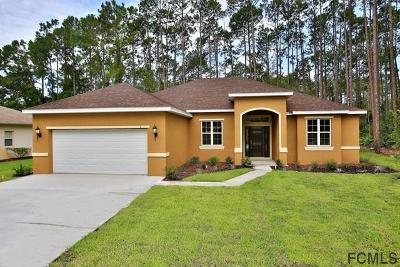 Matanzas Woods Single Family Home For Sale: 3 Lake Charles Pl