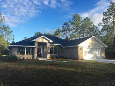 Palm Coast FL Single Family Home For Sale: $244,650