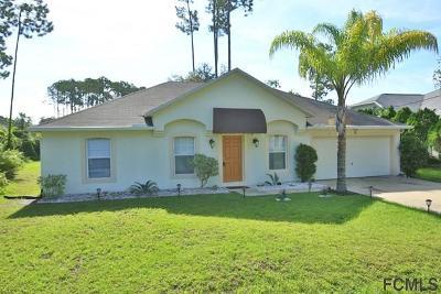 Indian Trails Single Family Home For Sale: 87 Beckner Ln