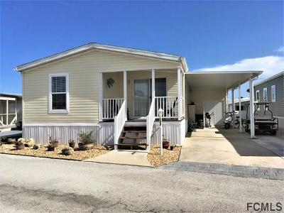 Flagler Beach Single Family Home For Sale: 127 Anchorage Dr