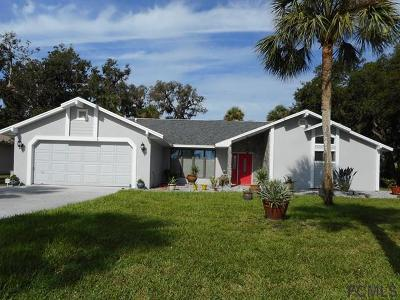 Flagler Beach FL Single Family Home For Sale: $459,000