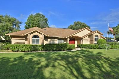 Ormond Beach Single Family Home For Sale: 34 Magnolia Dr N