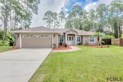 Palm Coast Single Family Home For Sale: 13 Rymer Lane
