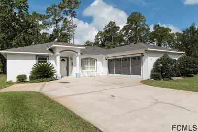 Palm Coast Single Family Home For Sale: 75 Breeze Hill Lane