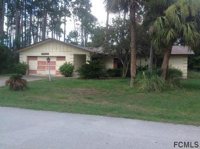 Palm Coast Single Family Home For Sale: 67 Forsythe Ln