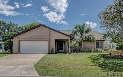 Palm Coast Single Family Home For Sale: 13 Clinton Ct S