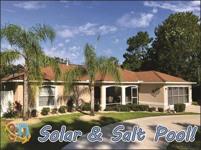 Palm Coast Single Family Home For Sale: 24 White Haven Lane
