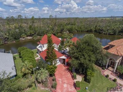 Palm Coast Single Family Home For Sale: 145 Cochise Court