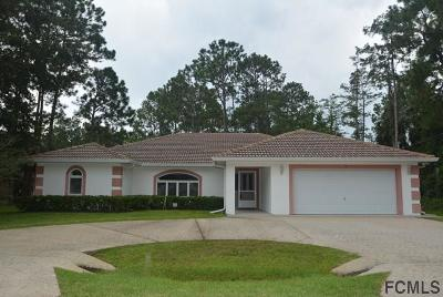 Palm Coast Single Family Home For Sale: 13 Rymsen Lane