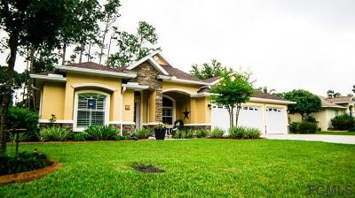 Palm Coast Single Family Home For Sale: 39 Ellsworth Drive